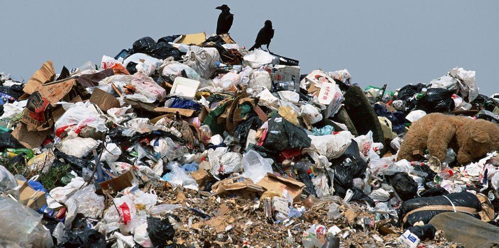 Бердянськ не прийматиме сміття зі Львова