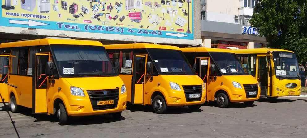 Перевозчики презентовали маршрутки, которые будут возить бердянцев следующие пять лет