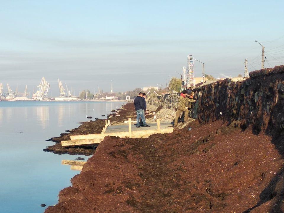 На бердянских Песках начали ремонтировать дамбу
