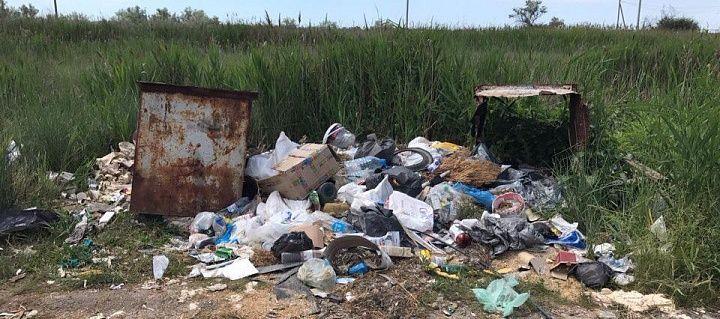 Прецедент: підприємство з Нововасилівки надаватиме послуги з вивезення сміття бердянському підприємцю