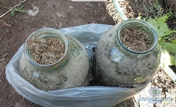 В Бердянську поліцейські вилучили наркотики та ліквідували два наркопосіви