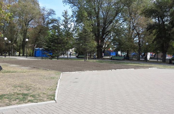 Володимир Шаповалов: клумба на Приморській площі зазнала непоправних втрат