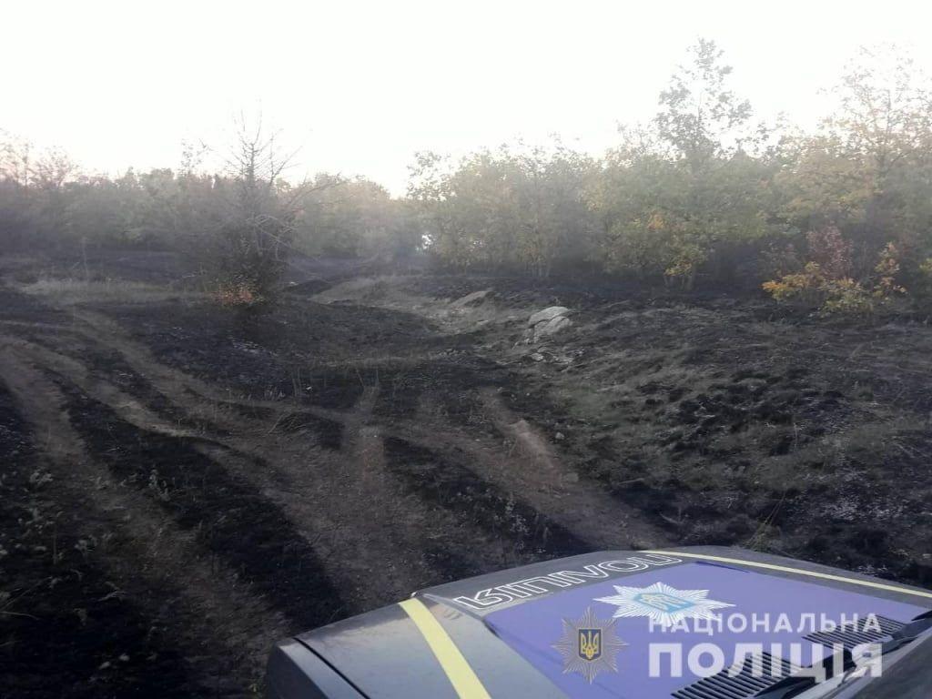 В Бердянську викрили підозрюваного у підпалі лісосмуги