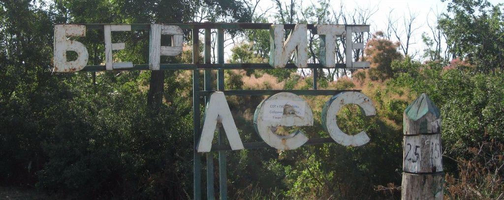 Бердянцы обеспокоены уничтожением лесного массива в микрорайоне АКЗ