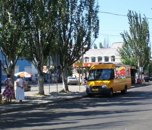 Мэр Бердянска Владимир Чепурной прокомментировал скандал с маршрутным такси
