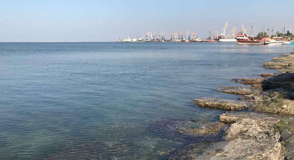 Море вблизи Бердянска чистое. Лабораторные исследования не выявили отклонений