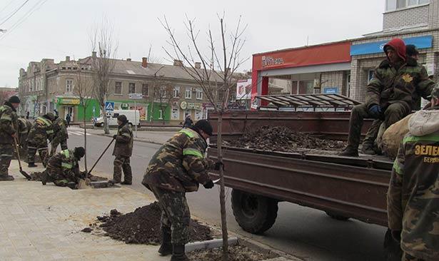В квітні в Бердянську було висаджено понад 4 тис. дерев