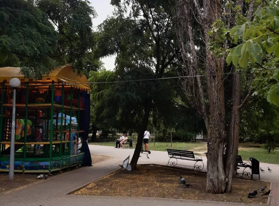 На бульваре Шевченко детский лабиринт установили рядом с аварийным деревом