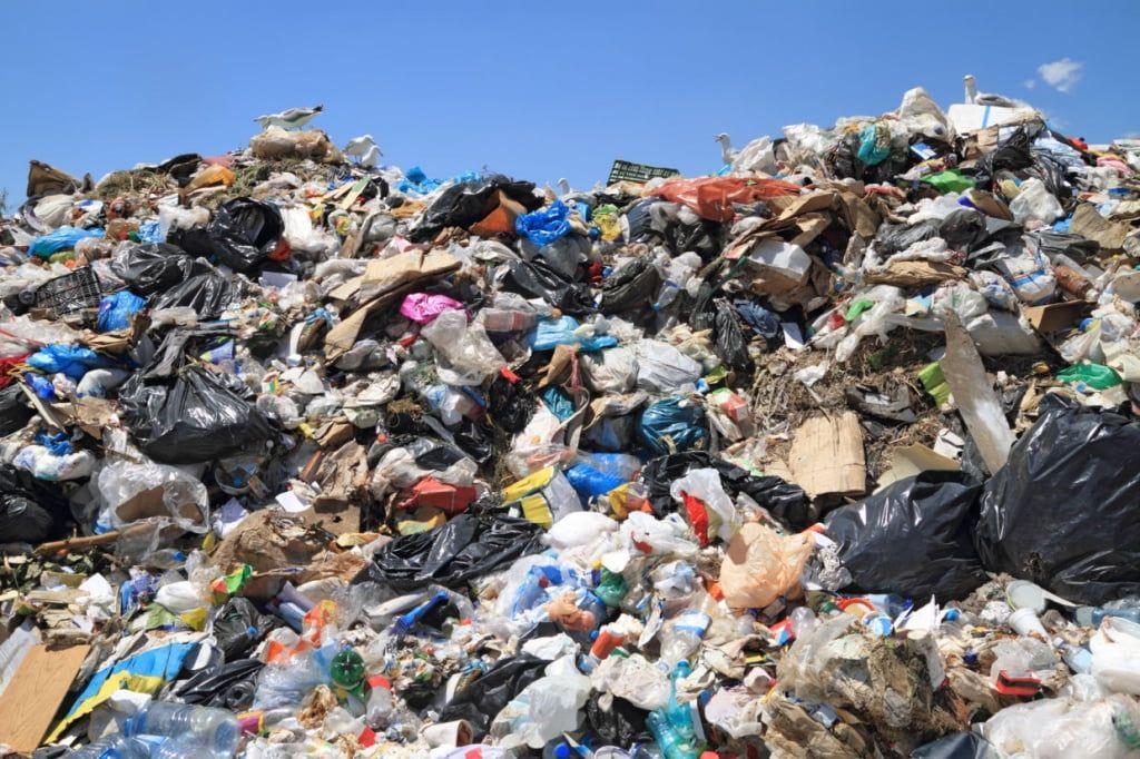 Бердянець: «їхав з дачі, побачив купу сміття, вирішив викинути своє»