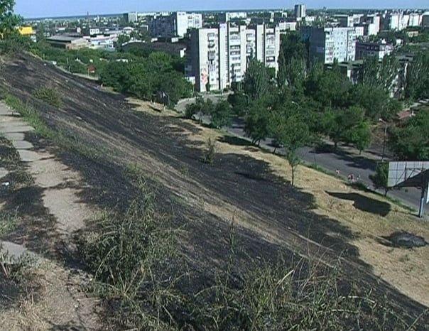В Бердянську з'явиться соціальна реклама про запобігання пожеж в екосистемі міста