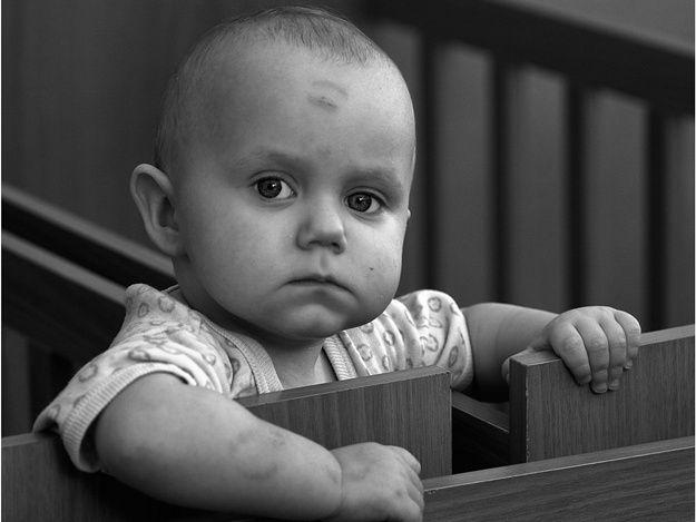 Парламент ввел университет наставников для детей-сирот идетей, лишенных родительской опеки