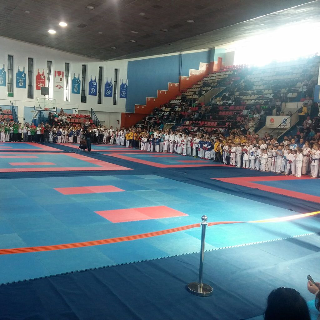 "Международный турнир ""NikolaevOpen 2015"""