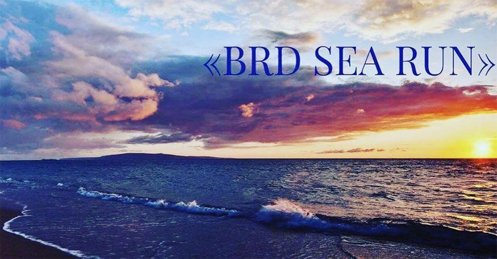 В Бердянске пройдет грандиозный турнир на выносливость «Вrd Sea Run»