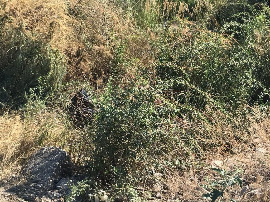В Бердянске дети во время игры на склоне средней горы обнаружили мужской труп