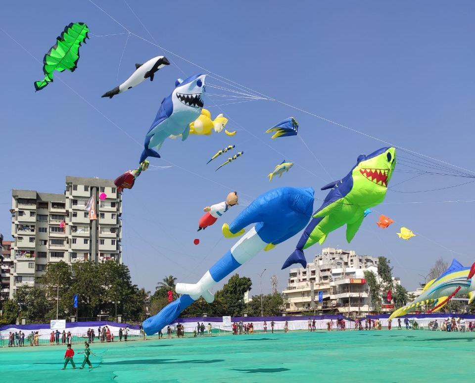 Представники Запорізької області у складі Збірної України взяли участь у відбірковому етапі Чемпіонату Світу з повітряних зміїв в Індії