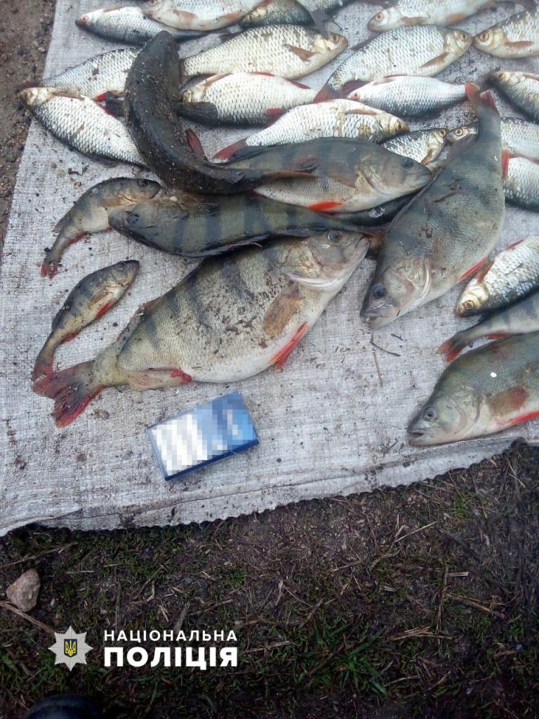 Бердянська поліція затримала автомобіль з сітками і незаконно виловленою рибою