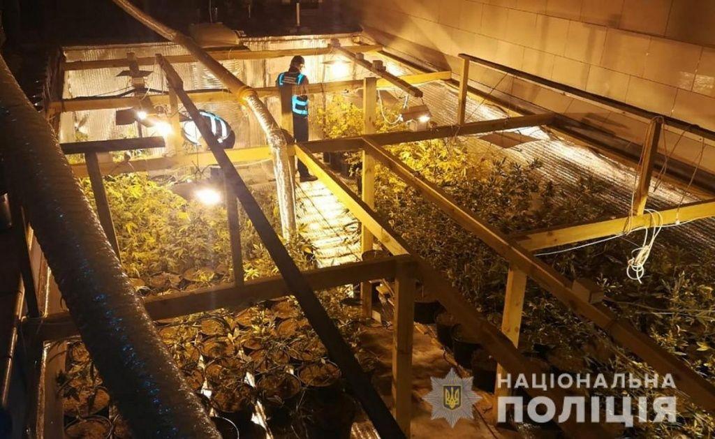 Бердянцю, в якого вилучили наркотиків на 1 мільйон гривень, обрано запобіжний захід