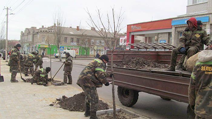 Владимир Шаповалов: за год в Бердянске высажено свыше 12 тысяч деревьев