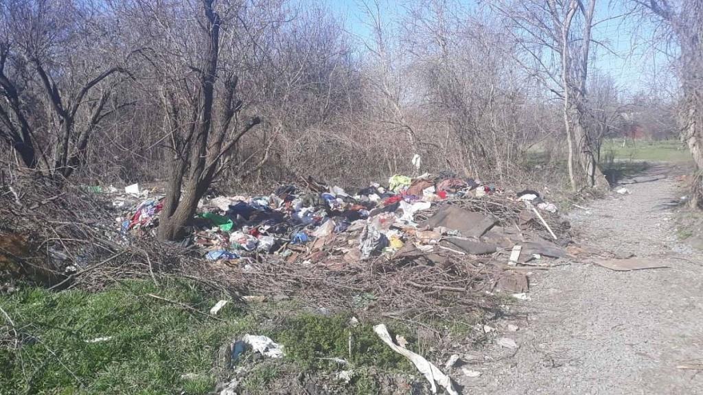 В Бердянську оштрафували правопорушників за утворення стихійних звалищ