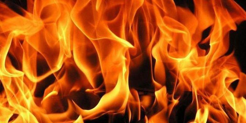 На бердянському сміттєзвалищі масштабна пожежа