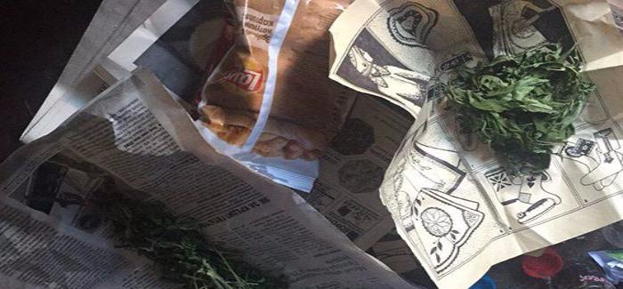 В Бердянську поліція під час обшуку вилучила зброю та наркотики