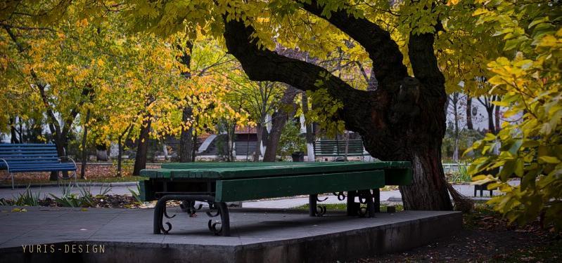В парке Шмидта обнаружили тело молодого мужчины