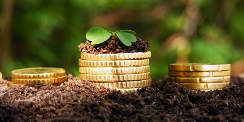 25 мільйонів гривень — загальна заборгованість за оренду землі в Бердянську