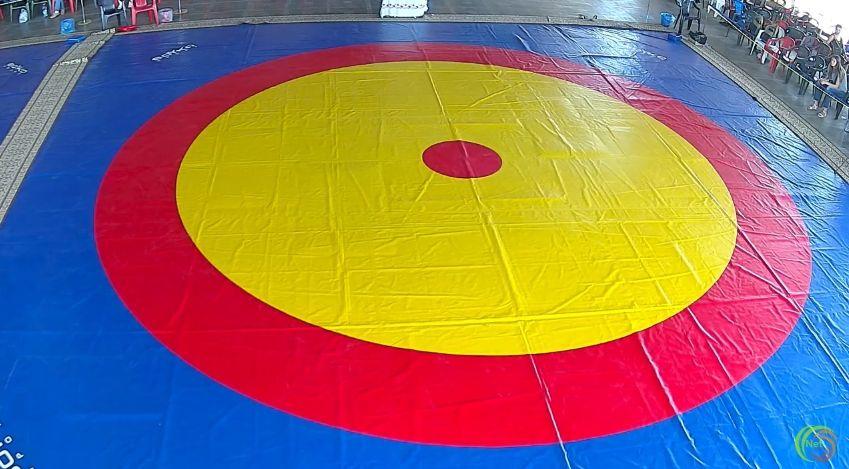 Наживо. Турнір з вільної боротьби у місті Бердянськ