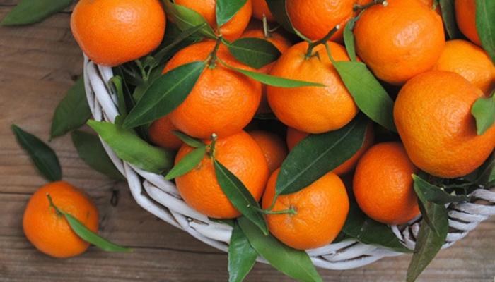 В государство Украину пытались ввести зараженные мандарины изГреции иТурции