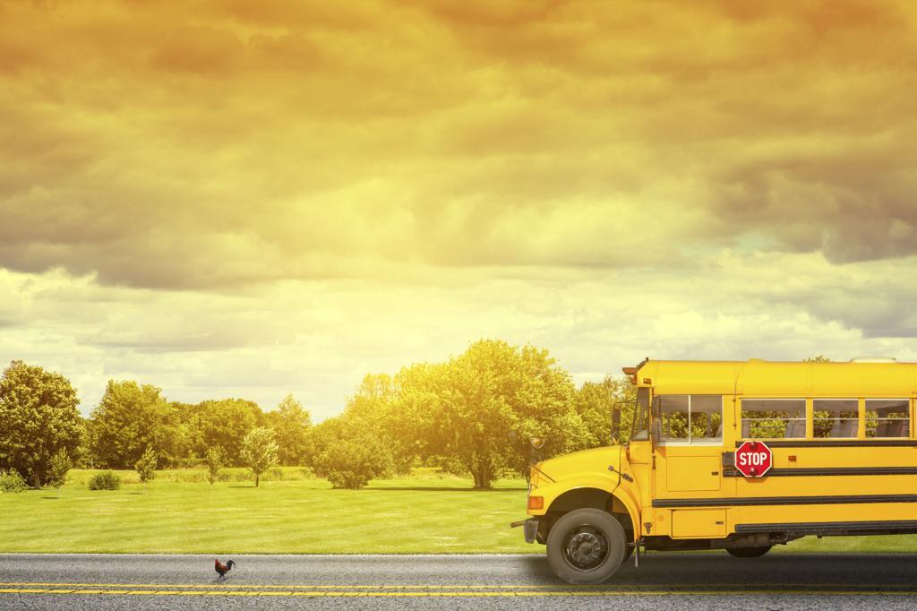 Шкільний автобус - за кошти держави не купили, від співфінансування відмовились