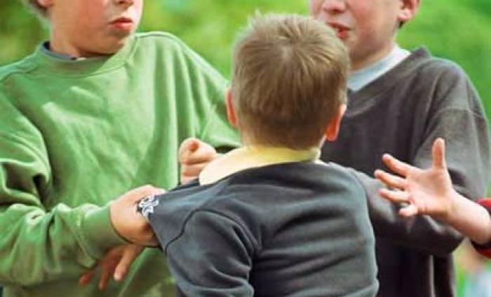 Дело об избиении восьмиклассника группой подростков на особом контроле у начальника бердянской полиции
