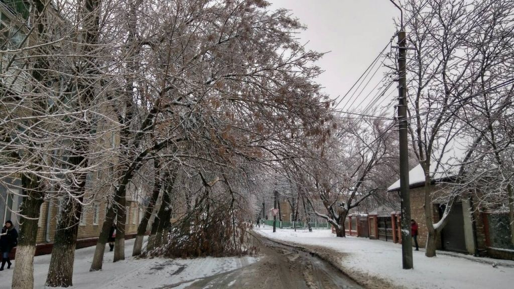 Непогода в Бердянську: понад 20 дерев повалено, обірвано три високовольтні лінії