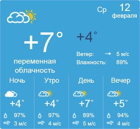 Самарская область село камышла погода
