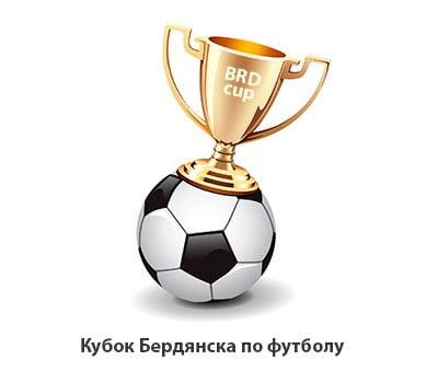 Прошли матчи Кубка Украины среди ветеранов и Кубка Бердянска