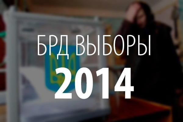 Социологическое исследование «БРД24» по выборам 2014