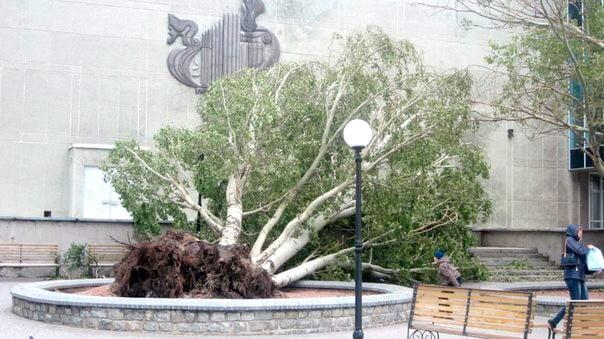 На ликвидацию последствий стихии, из резервного фонда города выделили 150 тыс. гривен